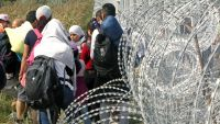 epa04932437 Migrants stand are stopped by the barb-wired border fence at the closed railway crossing between Serbia and Hungary, near Horgos, Serbia, 15 September 2015. Hungary declared a state of emergency in two counties along its border with Serbia,