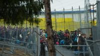 epa05164700 Refugees and migrants line up as they walk along a border fence after they crossed the Slovenian-Austrian border, near the village of Spielfeld, Austria, 16 February 2016. Austria is making plans for the introduction of border controls at a
