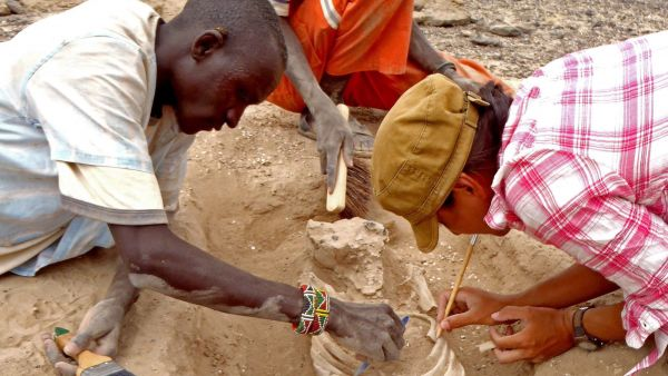 In this August 2012 photo provided by Marta Mirazon Lahr, researcher Frances Rivera, right, Michael Emsugut, left, and Tot Ekulukum excavate a human skeleton at the site of Nataruk, West Turkana, Kenya. This skeleton was that of a woman, found lying on